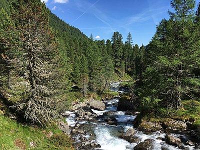 Lienzer Höhenweg ©Haselsteiner (TVB Osttirol)